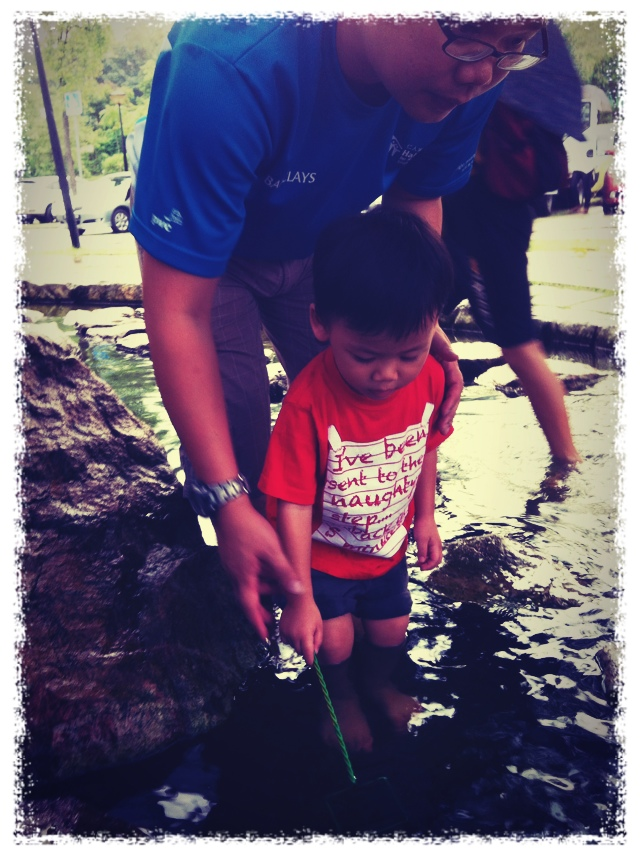 Longkang Fishing @ Bottle Tree Park