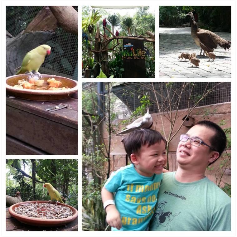 Wildlife Park @ Sunway Lagoon