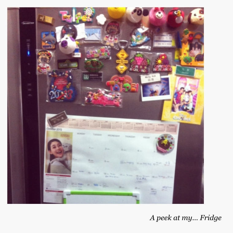 The front of my fridge