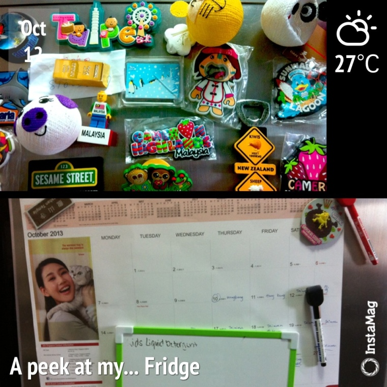 The Front top and bottom of my very messy fridge
