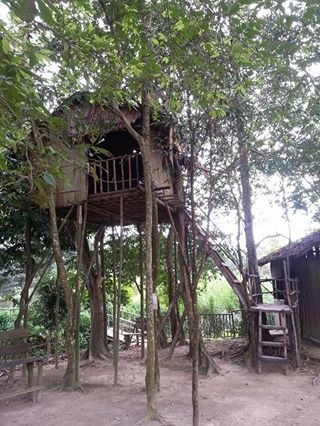 The tree-top house in the Asli Village which the boy tried to climb up to. There is a limit to the number of pax up in the house at one time. (Photo Credit: My SIL)