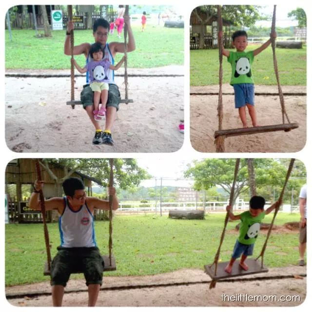 Even Chubby cannot resist having a try on the swing. Looks dangerous for younger kids, but its more fun for the older kids as they can stand and swing!